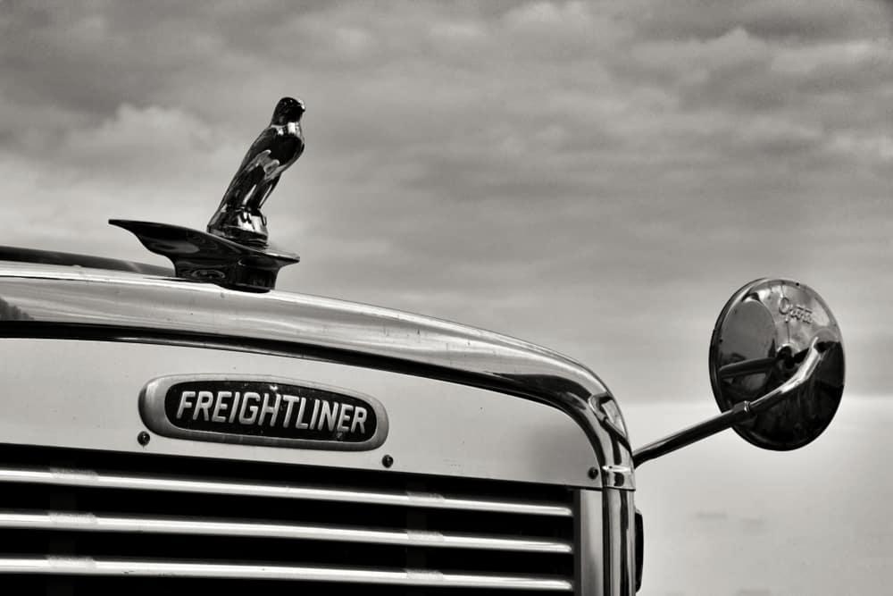 freightliner green engine light